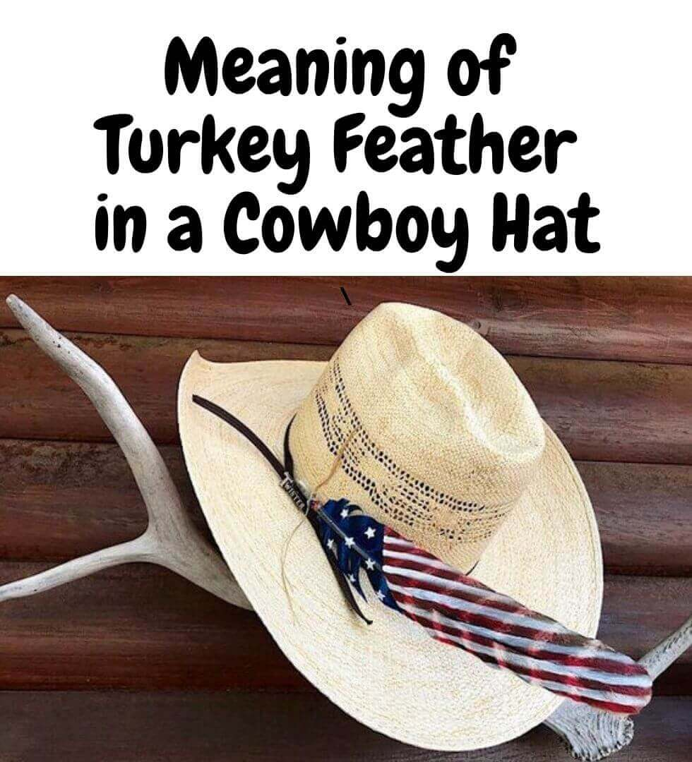 Turkey Feather in Cowboy Hat Meaning